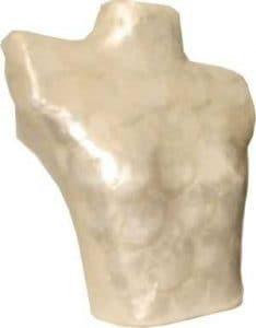 Buste décoratif pour bijoux, colliers, colliers, Fantaisiste, auwändiges décors Coquillage env. 20x 23cm