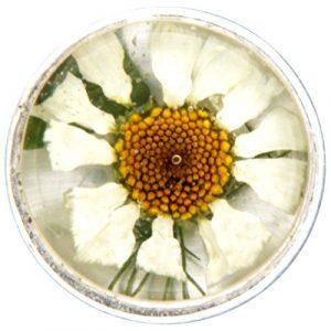 My imenso insignie Verre/Mini fleurs 14mm 14–1176